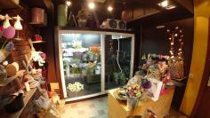 Холодильная камера для цветов Frostberg